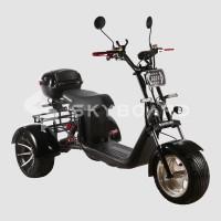 Электроскутер CityCoco SkyBoard Trike BR40-3000 PRO FAST